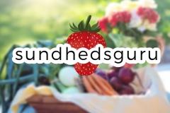 Sundhedsguru_logo